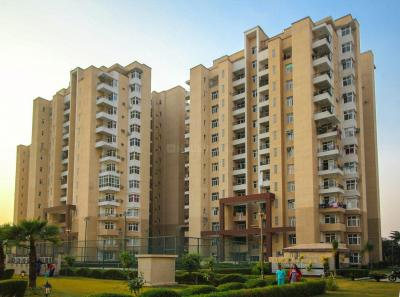 Gallery Cover Image of 430 Sq.ft 1 RK Independent Floor for buy in Omaxe Palm Greens, MU Greater Noida for 1500000