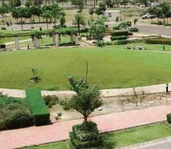 Gallery Cover Pic of Emaar Mohali Hills Plot
