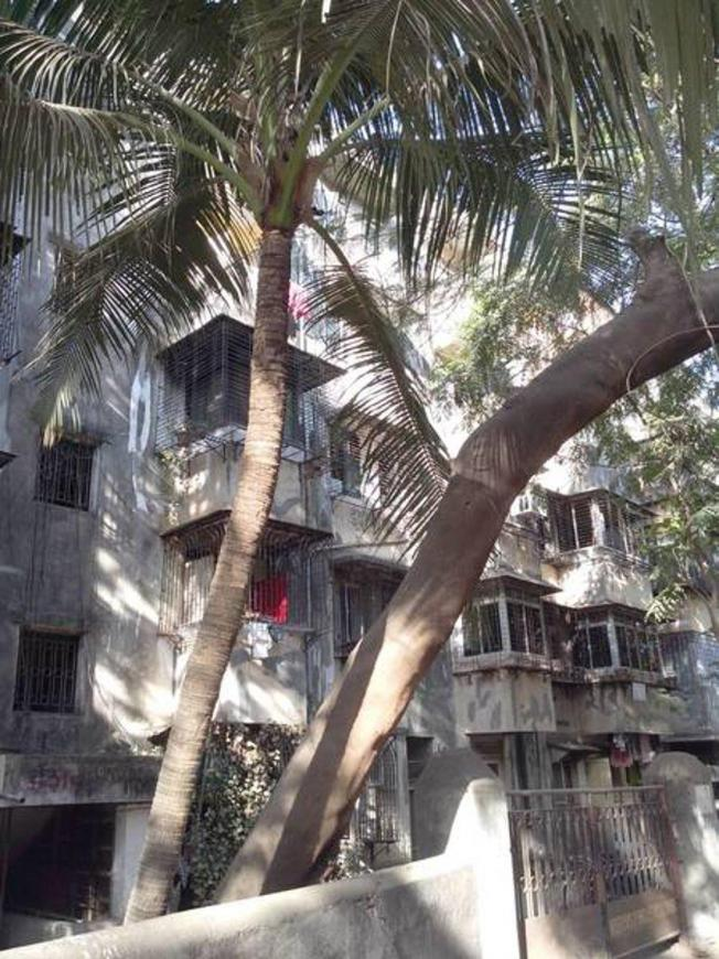 Gallery Cover Pic of Reputed Isha Krupa Apartment