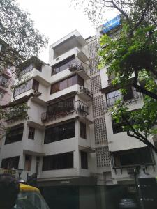 Gallery Cover Image of 850 Sq.ft 1 BHK Apartment for rent in Vardhman, Malabar Hill for 75000