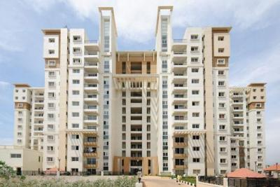 Gallery Cover Image of 1200 Sq.ft 2 BHK Apartment for rent in Salarpuria Symphony, Basapura for 20000
