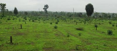 Residential Lands for Sale in Smart Vrindavan Garden
