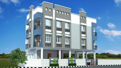 Chennai Marigold