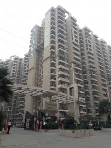 Gallery Cover Image of 1100 Sq.ft 2 BHK Apartment for rent in Gaursons Gaur City 2 11th Avenue, Noida Extension for 10000
