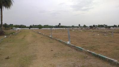 Gallery Cover Pic of Jayaguru Plots