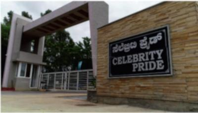 Celebrity Pride Access Phase 2