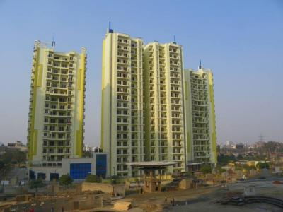 Gallery Cover Image of 3200 Sq.ft 3 BHK Apartment for buy in Mahagun Maple, Sector 50 for 25000000