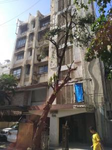 Gallery Cover Pic of Shishir Apartment