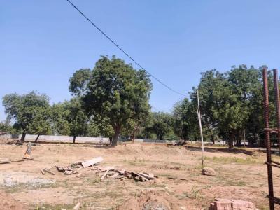 Vishnudhara Solace Green