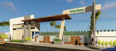 Virtusa Lorna Greens Plot