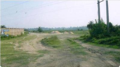 Residential Lands for Sale in Maa Tara Sagar Sundar Land