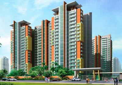 Gallery Cover Image of 1024 Sq.ft 3 BHK Independent Floor for rent in BPTP The Resort, Sector 75 for 10000