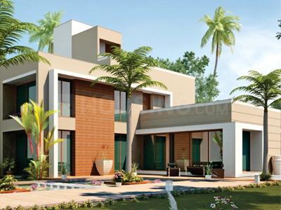 Gallery Cover Pic of Pacifica Sanguine Estates