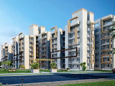 Gallery Cover Pic of RAS Development Residency II