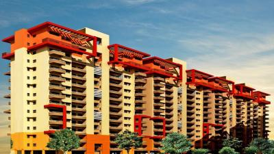 Gallery Cover Image of 1236 Sq.ft 2 BHK Independent Floor for buy in TDI Espania Heights, Nangal Khurd for 2725000