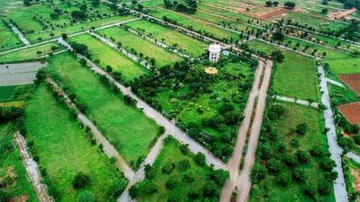 Alekhya Srivaari County Villa Plots