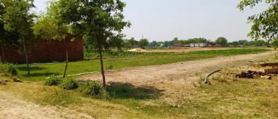 1000 Sq.ft Residential Plot for Sale in Khajuri Colony, Varanasi