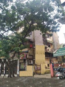 Gallery Cover Image of 555 Sq.ft 1 BHK Apartment for rent in Sheetal Arcade, Mira Road East for 11000