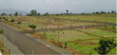 Garden Of Eden V