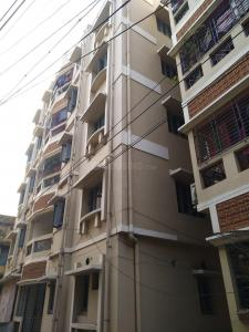 Gallery Cover Pic of Renuka Apartment
