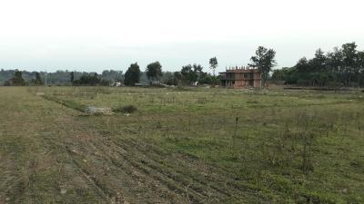 Residential Lands for Sale in Sarahna Defence Colony Prem Nagar