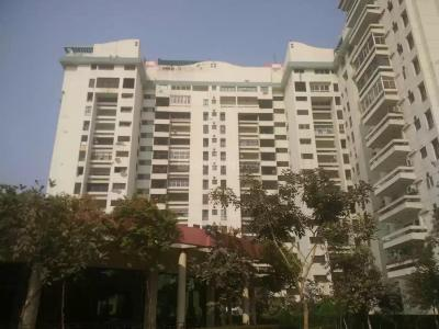 Gallery Cover Image of 1145 Sq.ft 2 BHK Apartment for rent in Mittal Cosmos Executive Apartment, Palam Vihar for 15000