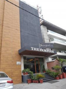 Gallery Cover Image of 1800 Sq.ft 3 BHK Independent Floor for buy in The Pamposh, Greater Kailash for 37500000