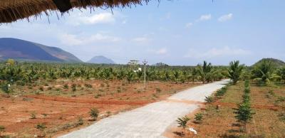 Charan Farmlands