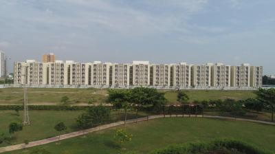 Gallery Cover Image of 1139 Sq.ft 3 BHK Apartment for rent in Wave Executive Floors, Wave City for 12000