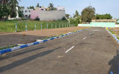 GTK Sai Green Field