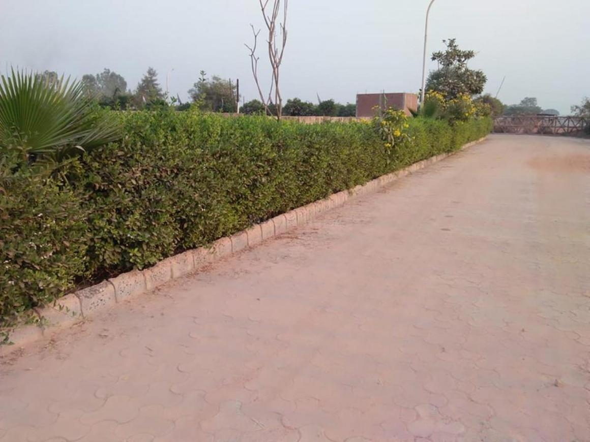 Gallery Cover Pic of Himalaya Green Park