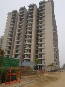 Gallery Cover Image of 1005 Sq.ft 2 BHK Apartment for rent in MR Proview Palm Resort, Raj Nagar Extension for 11000