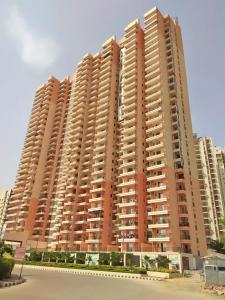 Gallery Cover Image of 1380 Sq.ft 3 BHK Apartment for rent in Skardi Greens, Pandav Nagar for 12000