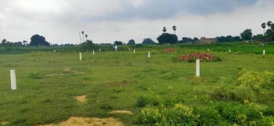 Residential Lands for Sale in Divshil Properties Royal Paradise