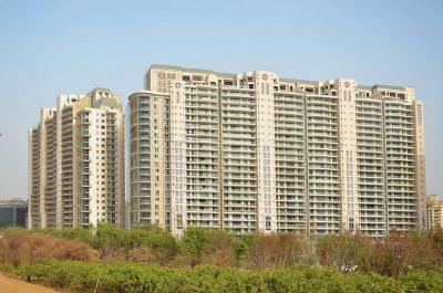 Gallery Cover Image of 6400 Sq.ft 4 BHK Apartment for rent in DLF Magnolias, Sector 42 for 330000