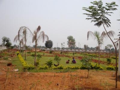 Bhashyam Cristal County V