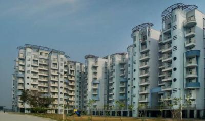 Gallery Cover Image of 2421 Sq.ft 3 BHK Apartment for buy in Heights, Nangal Khurd for 4500000