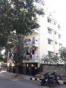 Gallery Cover Pic of Dwaraka Residency