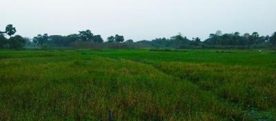 Residential Lands for Sale in Shantinir Project