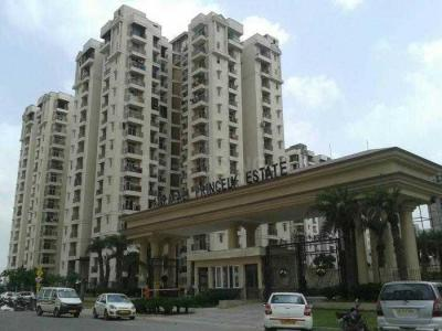 Gallery Cover Image of 1015 Sq.ft 3 BHK Apartment for buy in Amrapali Princely Estate, Sector 76 for 5500000