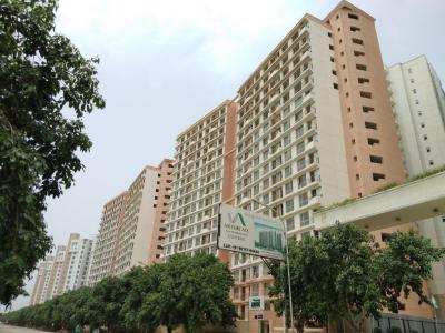 Gallery Cover Image of 495 Sq.ft 1 RK Apartment for buy in Sector 143 for 2025000