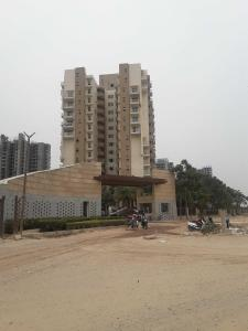 Gallery Cover Image of 1521 Sq.ft 3 BHK Apartment for rent in Sector 37D for 18000