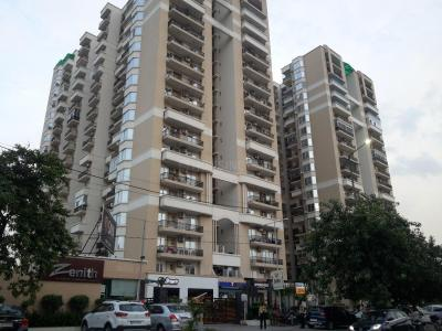 Gallery Cover Image of 1480 Sq.ft 3 BHK Apartment for rent in Saya Zenith, Ahinsa Khand for 19000