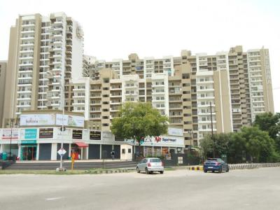 Gallery Cover Image of 1495 Sq.ft 2 BHK Apartment for rent in Sector 143 for 19000