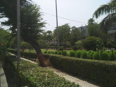 Parks Image of 1650 Sq.ft 3 BHK Apartment for rent in Arun Vihar, Sector 37 for 30000