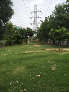 Parks Image of 550 Sq.ft 1 RK Independent Floor for rent in Sushant Lok I for 12000