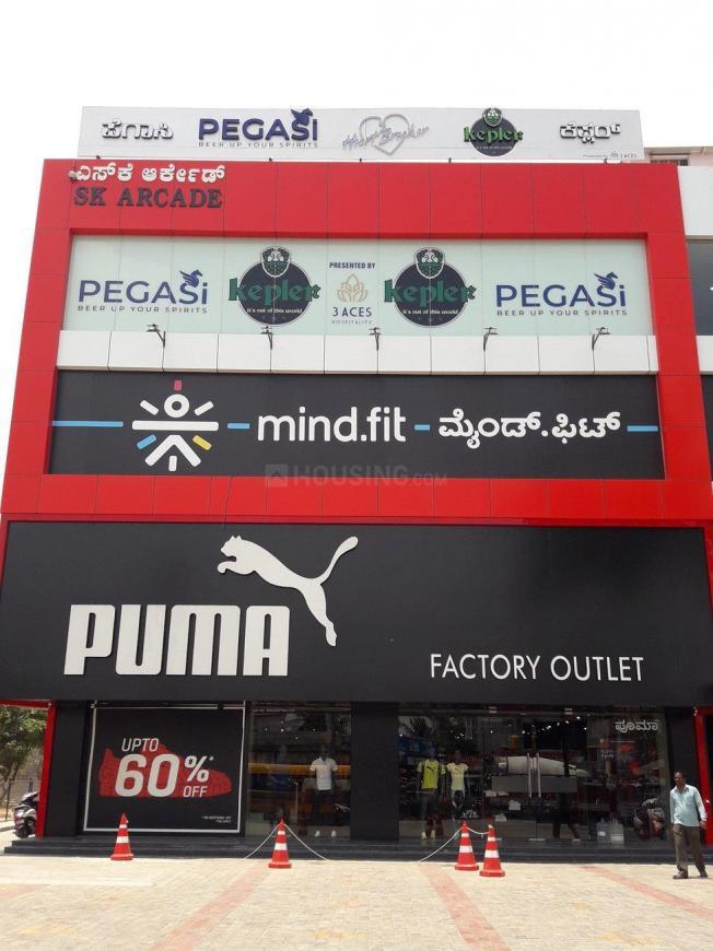 Stores/Shops