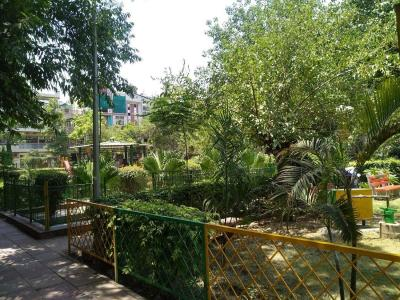 Parks Image of 500.0 - 1400.0 Sq.ft 1 BHK Apartment for buy in Goel Luxury Homes