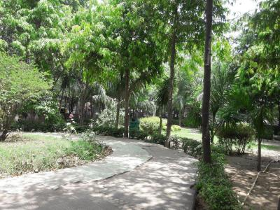Parks Image of 0 - 900 Sq.ft 2 BHK Independent Floor for buy in Jamia Height