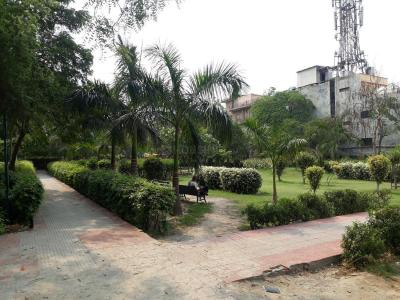 Parks Image of 300 Sq.ft 1 BHK Independent House for rent in Sector 55 for 15000